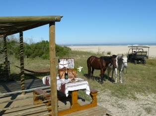 Beachdeck With Horses Low Res